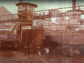 A hatvani cukorgyár