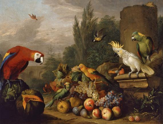 Gyümölcscsendélet papagájokkal és fehér kakaduval