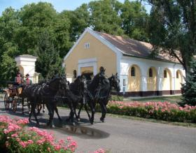 The Coach Museum of the National Ménes Horse-Breeding and Trading Inc. of Mezőhegyes