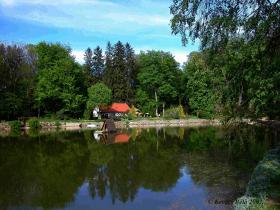 The Creek Cuha and the Zirci Arboretum