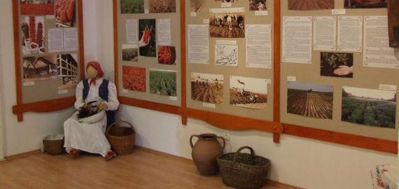 Röszkei Paprika Park - Paprika Üzem és Múzeum