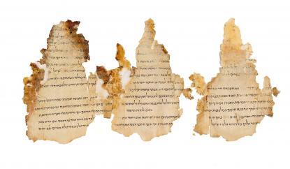 Templom-tekercs<br> 19-21. hasáb<br> Qumrán, 11. barlang<br> I. e. 1. század vége - i. sz. 1. század eleje<br> Héber nyelvű; tinta és pergamen<br> 18 x 40 cm<br>