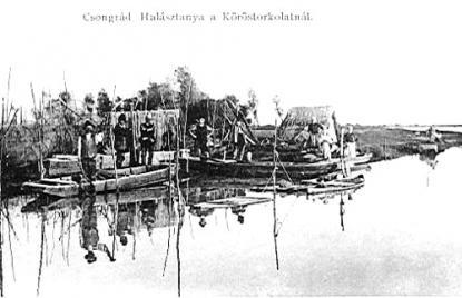 Halásztanya a Köröstorkolatnál