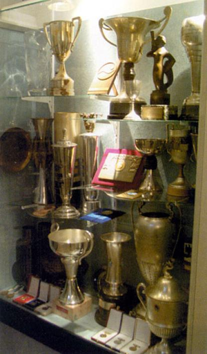 Medals and cups of the national group of Hungarian swimmer