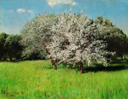 Virágzó almafák