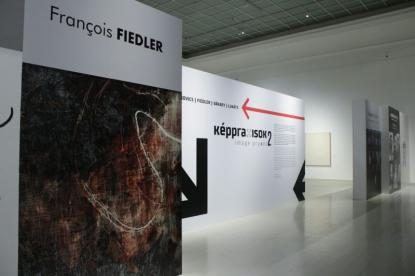 Képpraxisok 2 - Francois Fiedler