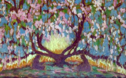 Sass Brunner Erzsébet: Fény és virágzás