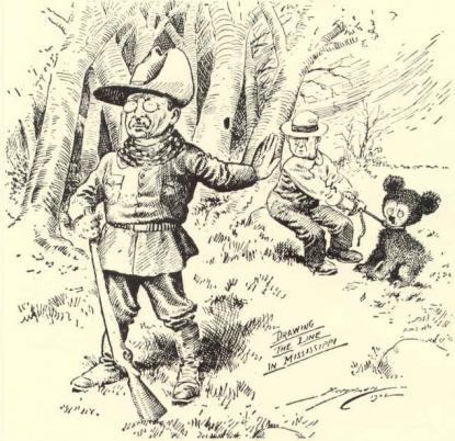 Theodore Roosevelt - Clifford Berryman politikai karikatúrája a Washington Postban, 1902.