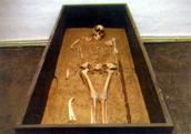 Avarkori harcos rekonstruált sírja