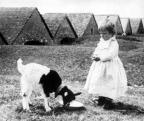 André Kertész: Kislány gidával