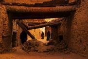 Bérczi Zsófia: Omladozó vár