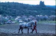 Földművelés lóval, háttérben a palóc falu látképe, 1970-80