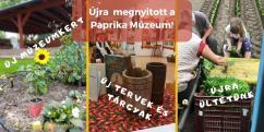 Újra megnyitott a Paprika Múzeum!