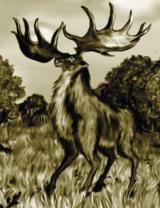 Giant Deer