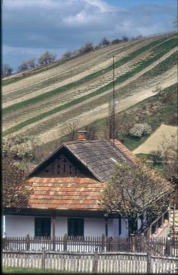 Lakóházuk a mindenség foglalata, melynek építését építőáldozattal kezdték. Erre utalnak a homlokzaton megjelenő külső jegyek. A képen egy hollókői ház.